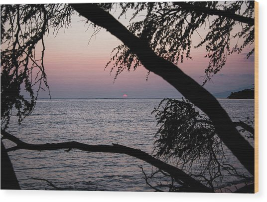 Wood Print featuring the photograph Maui Sunset by Jennifer Ancker