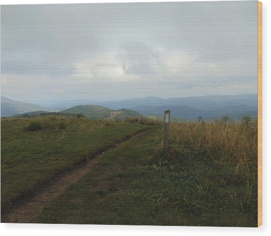 Max Patch Wood Print