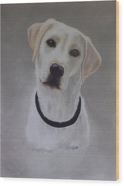 Maxie Wood Print by Janice M Booth