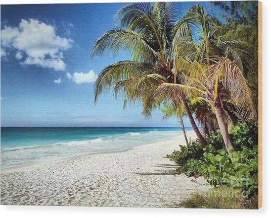 Maxwell Beach Barbados Wood Print