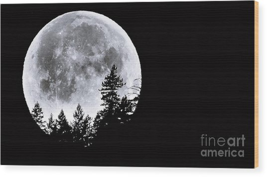 May 4 Moon Set Wood Print