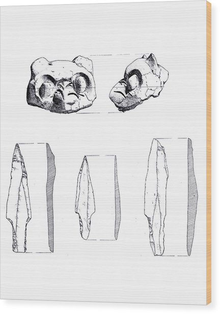 Maya Cat Head And Stone Tools Wood Print