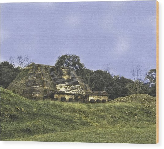 Mayan Ruins In Belize Wood Print