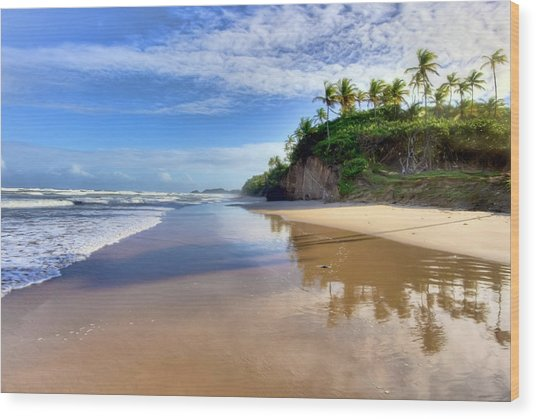 Mayaro Beach Trinidad Wood Print