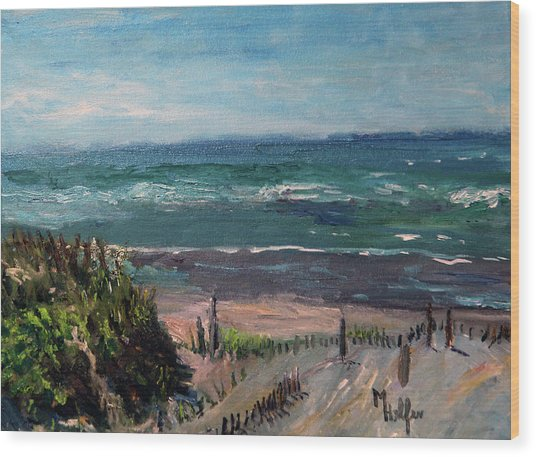 Mayflower Beach Wood Print