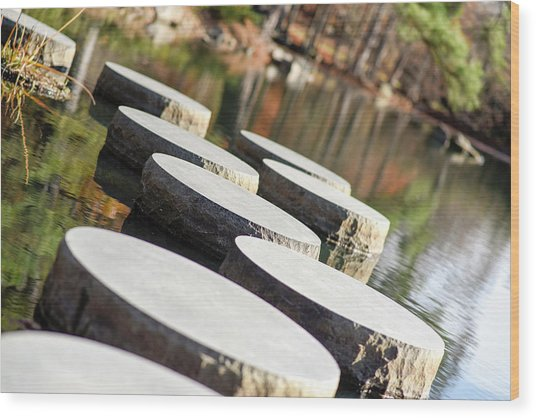 Maymont Stepping Stones Wood Print