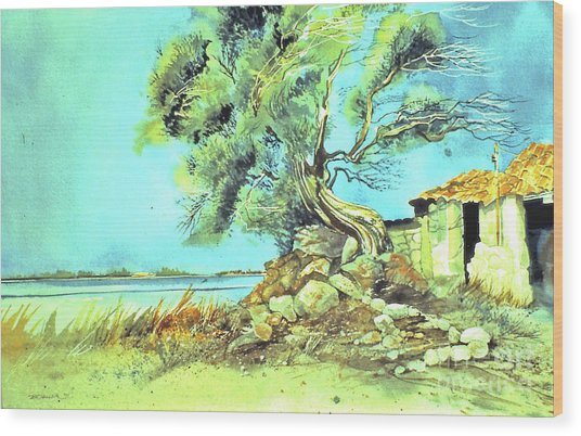 Wood Print featuring the painting Mayorcan Tree by Douglas Teller