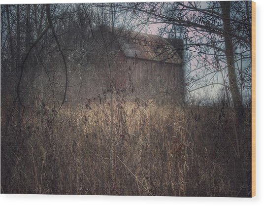 0025 - Mayville's Hidden Barn I Wood Print
