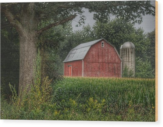 0027 - Mayville's Lapeer Road Red Wood Print