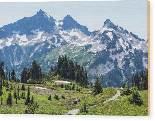 Mazama Ridge And Tatoosh Range Wood Print