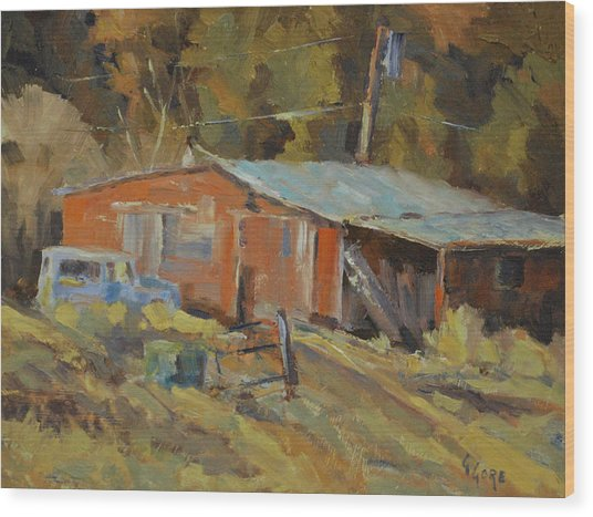 Mccarthy's Shed Wood Print by Gary Gore