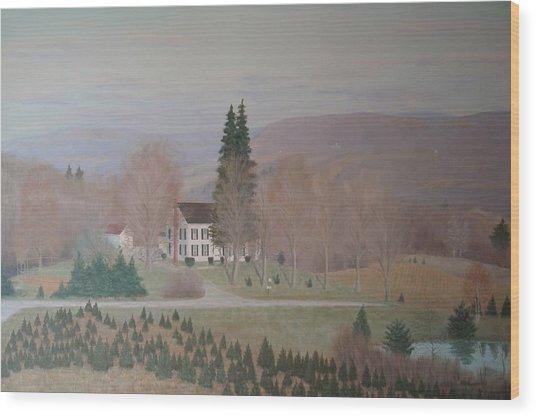 Mccarty Farm House Wood Print by Joseph Stevenson