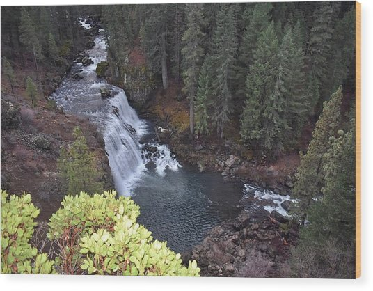 Mccloud River Falls Wood Print
