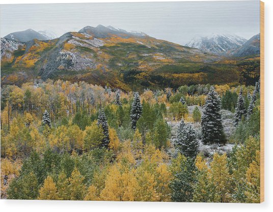 Mcclure Pass - 9606 Wood Print