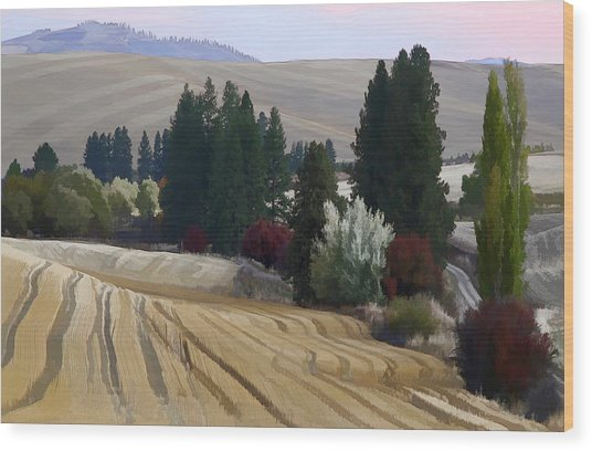 Mckenzie Road In The Palouse Wood Print by Jerry McCollum