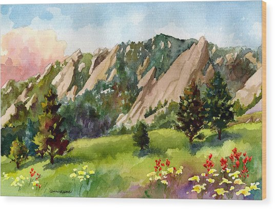 Meadow At Chautauqua Wood Print