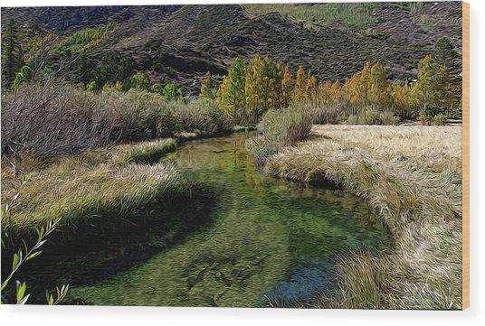 Meadow Creek Wood Print