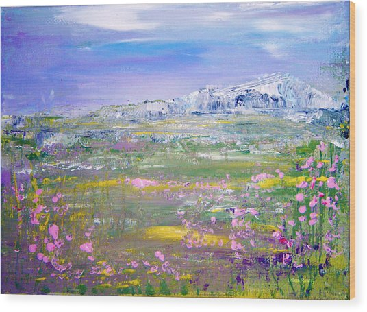Meadow Sky By Colleen Ranney Wood Print