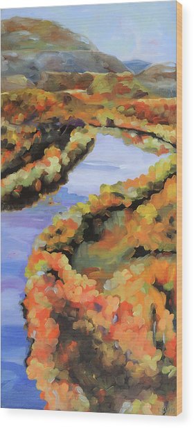 Meandering Shenandoah Wood Print by Anne Lewis