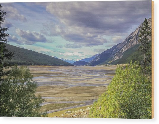 Wood Print featuring the photograph Medicine Lake Bed 2006 by Jim Dollar