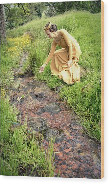 Medieval Lady By A Stream Wood Print