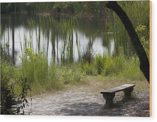 Meditation Spot By A Pond Wood Print by Tina B Hamilton