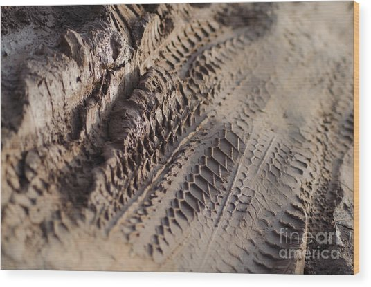 Medium Cu Motorcycle And Car Tracks In Mud Wood Print