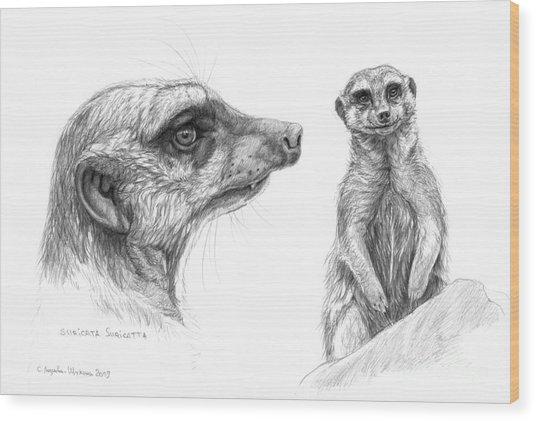 Meerkat - Suricata Suricatta Wood Print by Svetlana Ledneva-Schukina