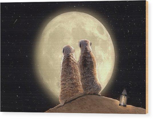 Meerkat Moon Wood Print