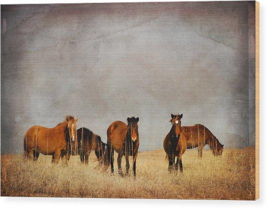 Meeting Wood Print