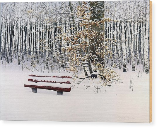 Memories Of Birchtrees Wood Print by Conrad Mieschke