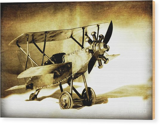 Memories Of Flying Wood Print by Lincoln Rogers