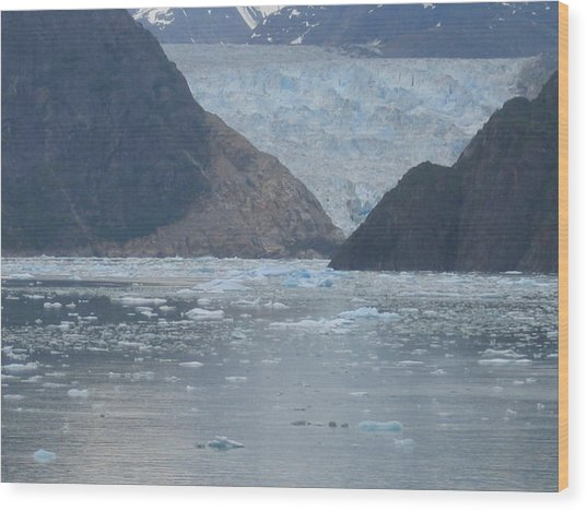 Mendenhall Glacier  Alaska Wood Print by Barb Morton