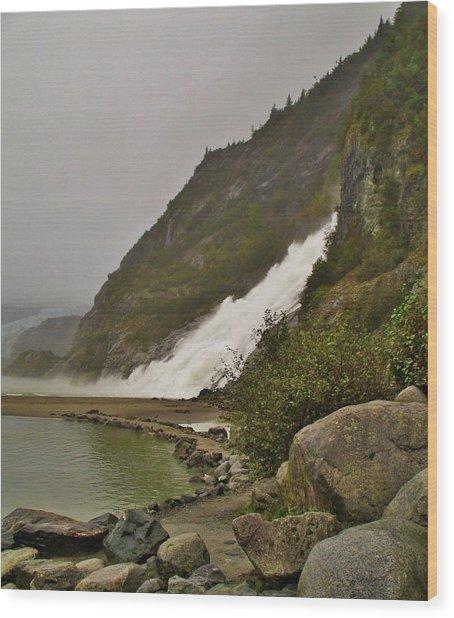 Mendenhall Glacier Park Wood Print
