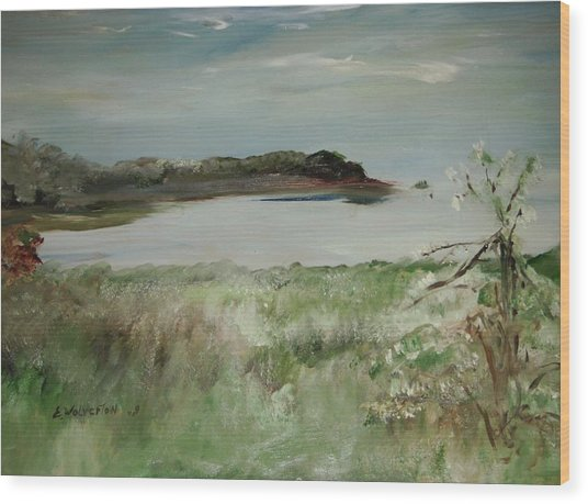 Mendocino Coastline Wood Print by Edward Wolverton