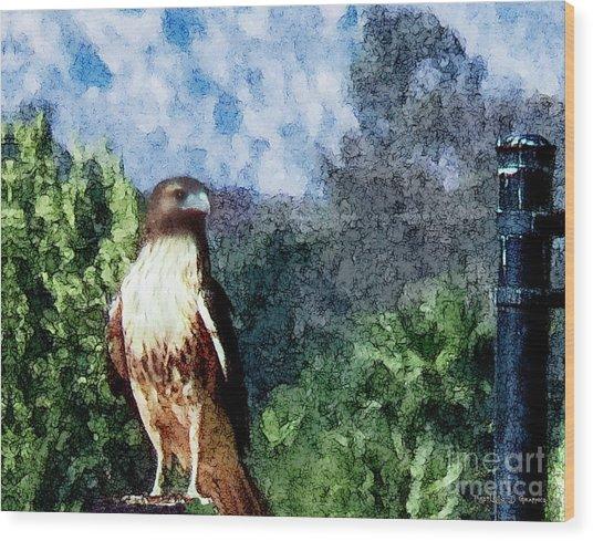 Menifee Falcon Wood Print