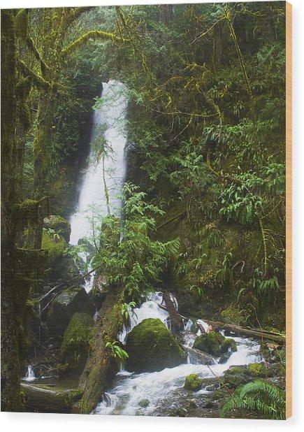 Merriman Falls Wood Print by Wilbur Young