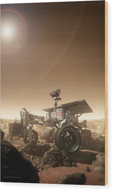 Wood Print featuring the digital art Mers Rover by Bryan Versteeg