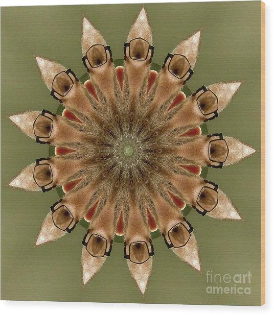 Mesmerizing Star Wood Print
