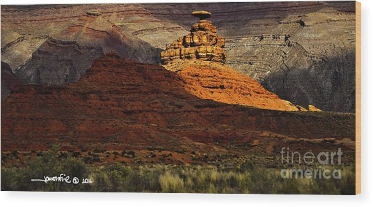 Mexican Hat 1 Wood Print