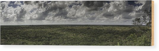 Mexican Jungle Panoramic Wood Print