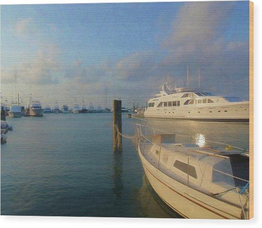 Miami Harbor Wood Print by JAMART Photography