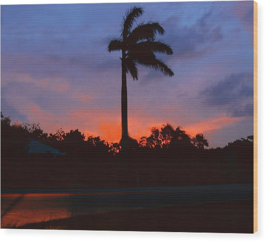 Miami Sunset Wood Print