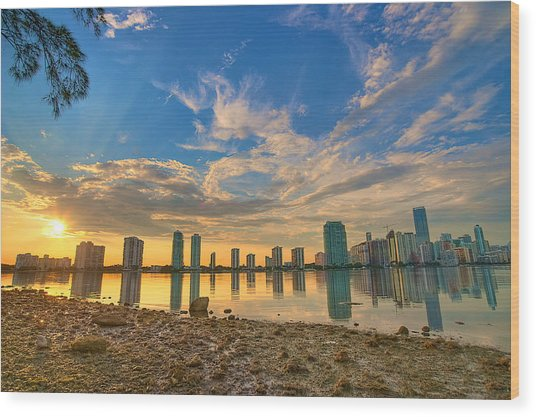 Miami Sunset Wood Print by William Wetmore