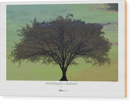 Michelangelo's Backyard Wood Print