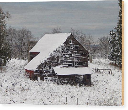 Michigan Barn Wood Print by Patrick Murphy