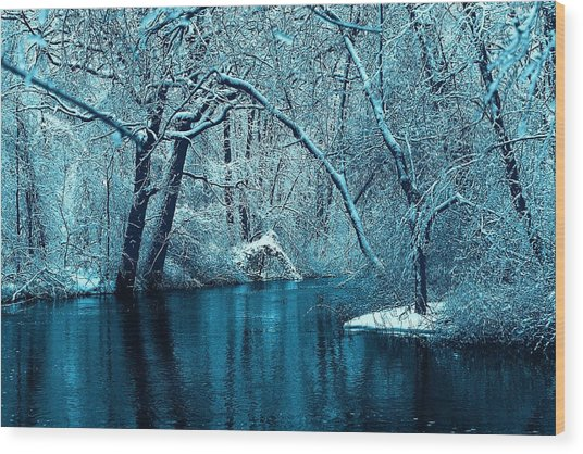 Michigan Winter 14 Wood Print