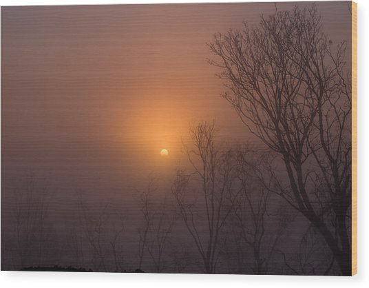Mid Day Fog Wood Print by Naman Imagery