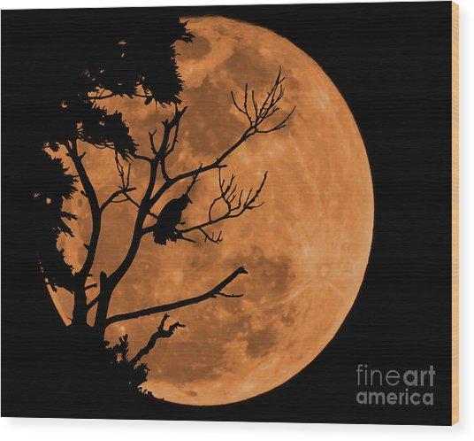 Mid Summer Nightmare  Wood Print