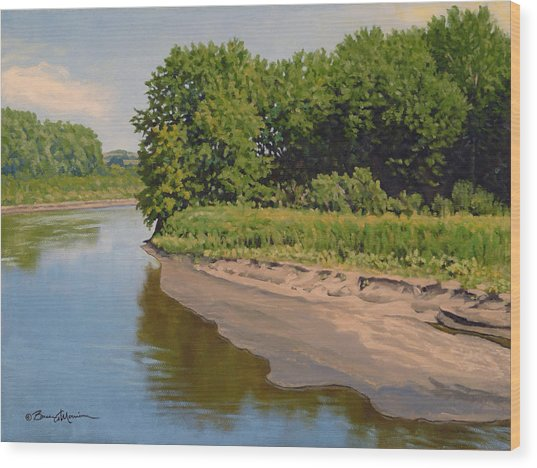 Mid Summer Prairie Stream Wood Print